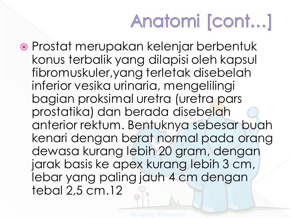 Anatomi [cont…]